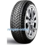 GT Radial Champiro Winterpro 2 ( 205/60 R16 92H )