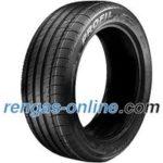 Profil Pro Sport ( 205/55 R16 91V pinnoitettu )